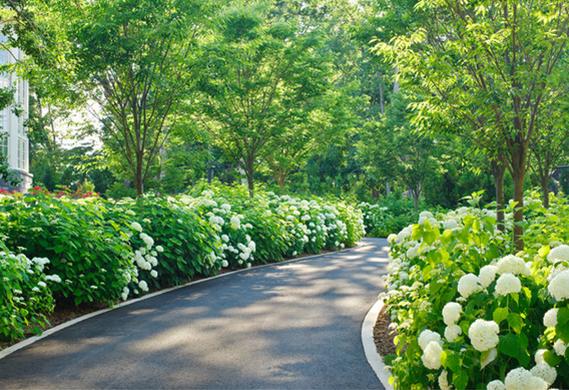 top 5 asphalt driveway ideas xlasphalt asphalt driveways melbourne